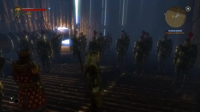 The Witcher 2: Assassins of Kings: БАГИ И ПРИКОЛЫ второго Ведьмака [VANDELEY]