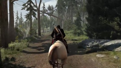 Интересности ASSASSIN'S CREED 3
