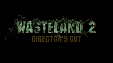 Wasteland 2: Director's Cut - Сюжет и масштаб