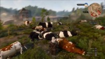 � The Witcher 3 ����� �������� �������������� ����� �����, ������ �����