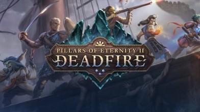 Авторы Pillars of Eternity II запустили опрос на тему пошаговых боёв