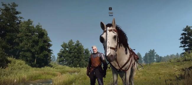 Новые скины для Плотвы (ver. 1.04) для The Witcher 3: Wild Hunt - Скриншот 1