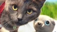 Кошачий косплей Far Cry 3 – Что такое Безумие
