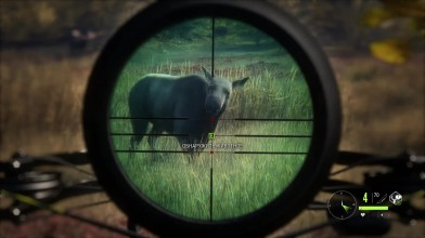 The Hunter: Call of the Wild - Охота. Взял лосиху и здорового лося с арбалета