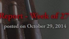 Отчёт о разработке за 27 октября