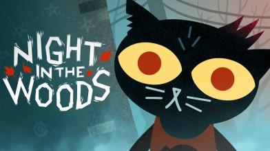 Night in the Woods выходит на Nintendo Switch