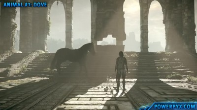 Shadow of the Colossus (PS4) - Получение трофея Animals of the Land.
