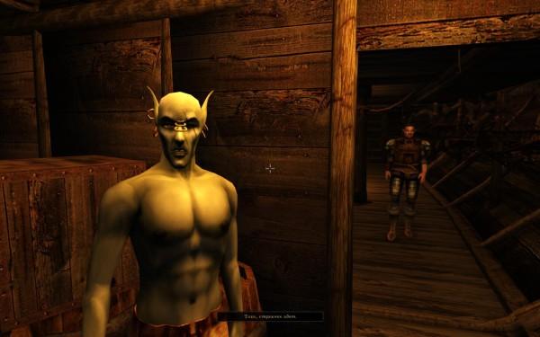 Morrowind Script Extender Mwse