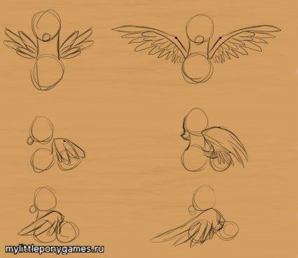 Рисование открытых крыльев пегасов
