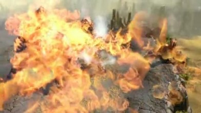 """Battle Forge """"EA Spring Break 2008: Debut Trailer"""""""