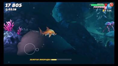 Hungry Shark World - новая акула убийца