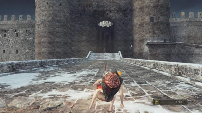 "Dark Souls 2 Scholar of the First Sin ""Аава + Уголь Вражды"""