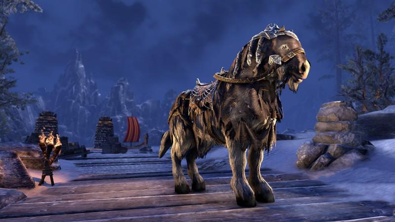 Морозостойкая лошадь