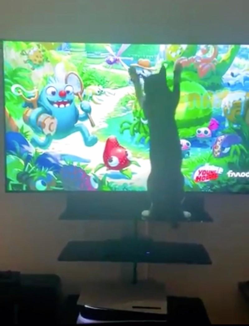 В новой рекламе Sony показала PlayStation 5 стоящей вверх дном - видео пришлось удалить