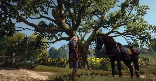 Новые скины для Плотвы (ver. 1.04) для The Witcher 3: Wild Hunt - Скриншот 2