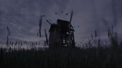 Darkwood - Лайв-экшен трейлер