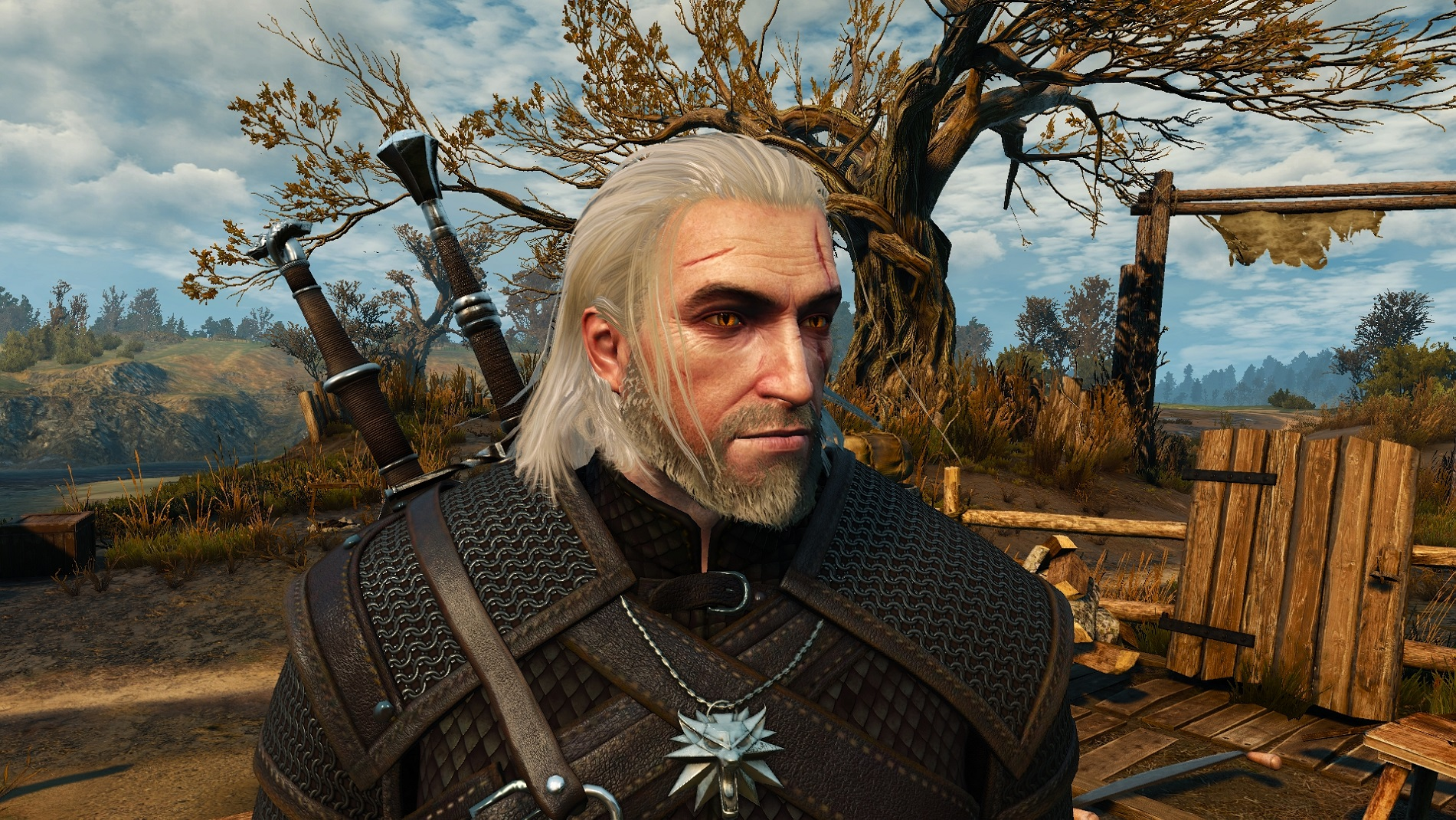"Witcher 3 Hair Styles: The Witcher 3: Wild Hunt ""Long Tucked Hair Reworked"