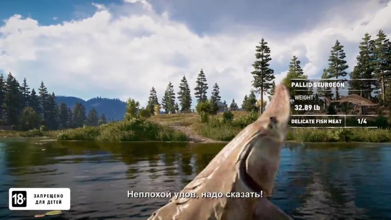 Far Cry 5 в Монтане: новая часть серии запомнится вам не только перестрелками!