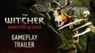 Анонсирована новая игра по вселенной The Witcher