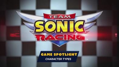Team Sonic Racing - Типы персонажей