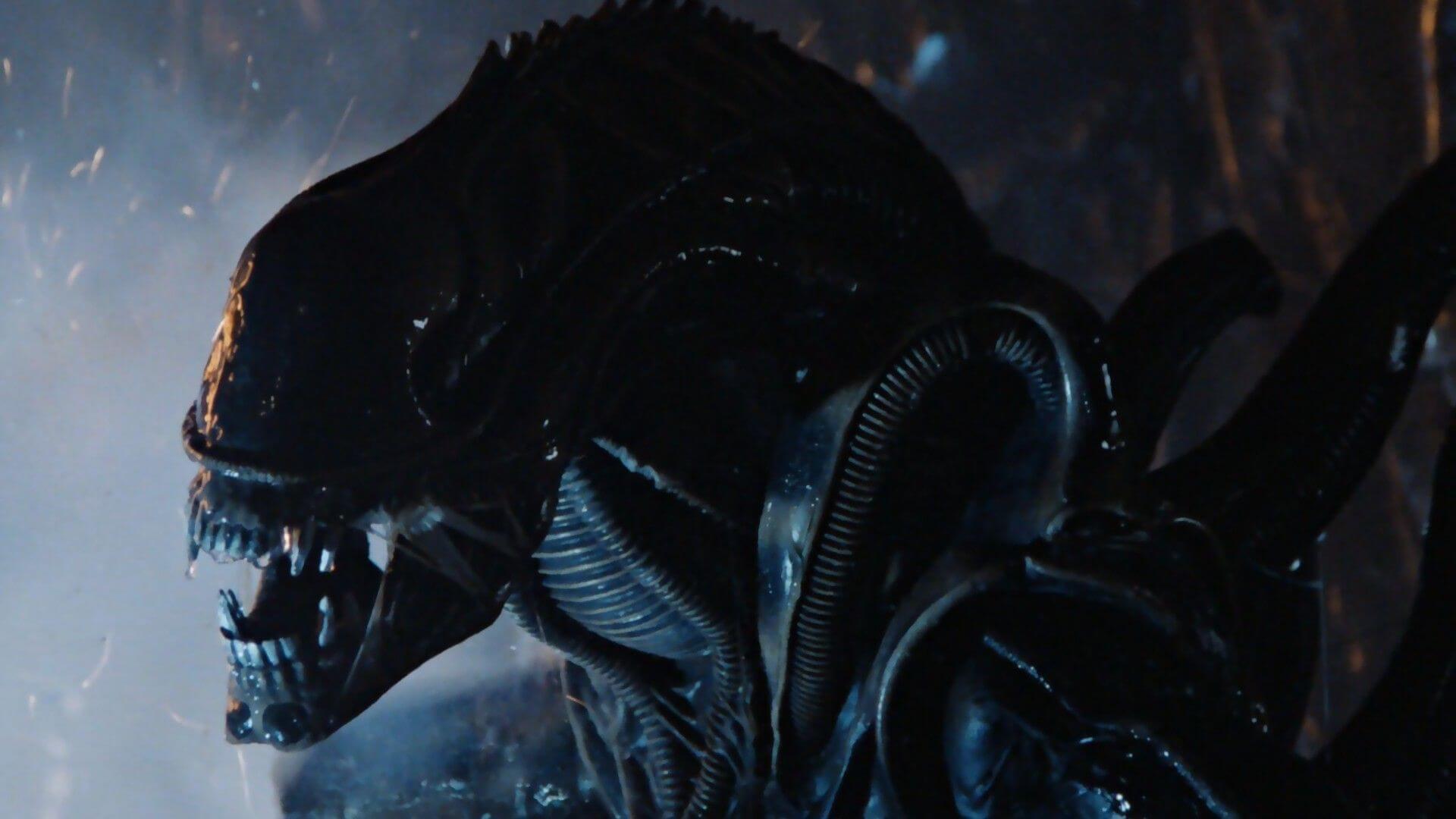 3D Realms также вели переговоры с FOX об игре во вселенной Чужих под названием Aliens: Hadleys Hope
