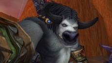 В World of Warcraft добавят камеру для селфи