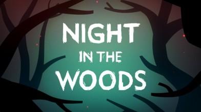 Night in The Woods перенесена на 2016 год