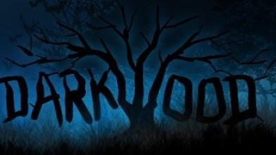 Разработчики Darkwood о создании игры и реакции аудитории